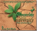 Picture of Joseph: Advancing Through Adversity