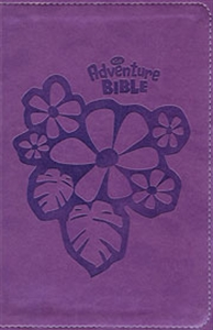 Picture of  NIV Adventure Bible (girls)